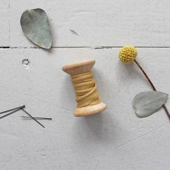 PASSEPOIL - Crêpe Mustard