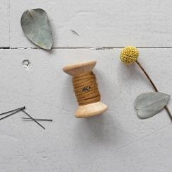 PIPING - Twig Ochre