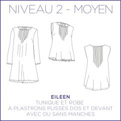 Eileen Dress/Blouse