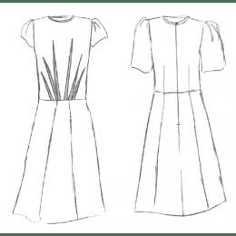 Zenith  Dress/Blouse